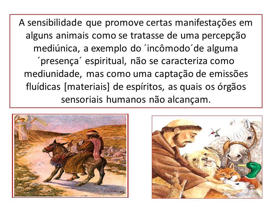 A sensibilidade que promove certas manifestações em alguns animais como se tratasse de uma percepção mediúnica, a exemplo do ´incômodo´de alguma ´presença´ espiritual, não se caracteriza como mediunidade, mas como uma captação de emissões fluídicas [materiais] de espíritos, as quais os órgãos sensoriais humanos não alcançam.